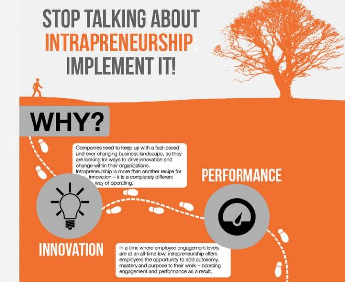 Intrapreneurship-Implement-it-infographic.jpg